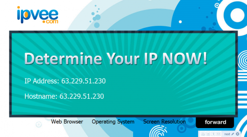 ipvee.com - find your real ip address, hostname, web browser, flash, java, operating system, screen resolution information_1246868715424
